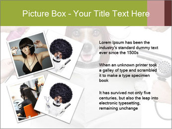 Hairdresser dog PowerPoint Template - Slide 23