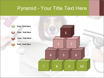 Hairdresser dog PowerPoint Templates - Slide 31