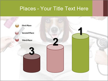 Hairdresser dog PowerPoint Template - Slide 65