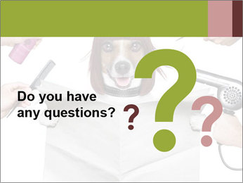 Hairdresser dog PowerPoint Templates - Slide 96