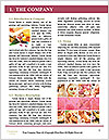 0000091245 Word Template - Page 3