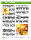 0000091251 Word Templates - Page 3