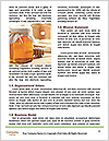 0000091251 Word Templates - Page 4