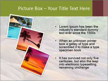 Mauritius island PowerPoint Template - Slide 17