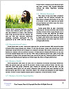 0000091253 Word Template - Page 4