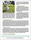 0000091256 Word Template - Page 4