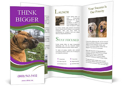 0000091262 Brochure Template