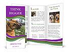 0000091262 Brochure Templates