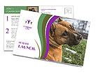 0000091262 Postcard Templates