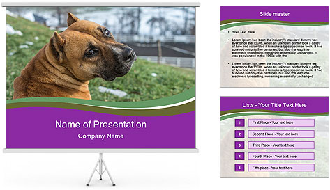 Dog For Fighting PowerPoint Template
