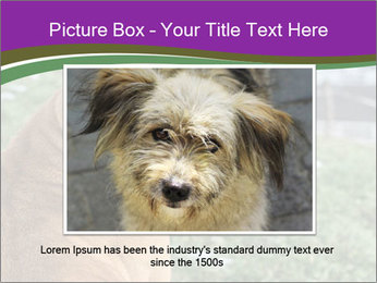 Dog For Fighting PowerPoint Template - Slide 15