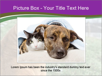 Dog For Fighting PowerPoint Templates - Slide 16