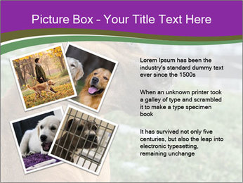 Dog For Fighting PowerPoint Template - Slide 23