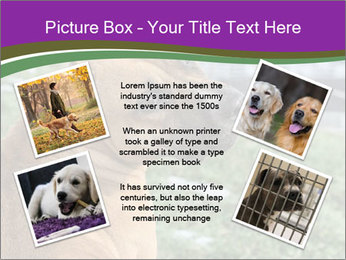 Dog For Fighting PowerPoint Template - Slide 24