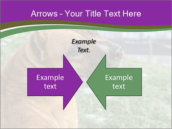 Dog For Fighting PowerPoint Templates - Slide 90