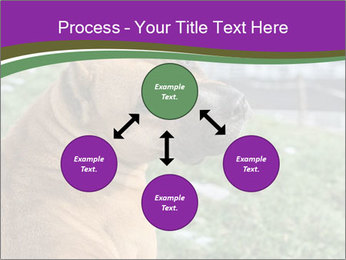 Dog For Fighting PowerPoint Template - Slide 91