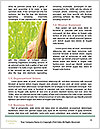 0000091267 Word Templates - Page 4
