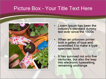 Plants Cuultivation PowerPoint Template - Slide 13