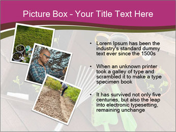Plants Cuultivation PowerPoint Template - Slide 17