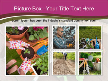 Plants Cuultivation PowerPoint Template - Slide 19