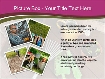 Plants Cuultivation PowerPoint Template - Slide 23