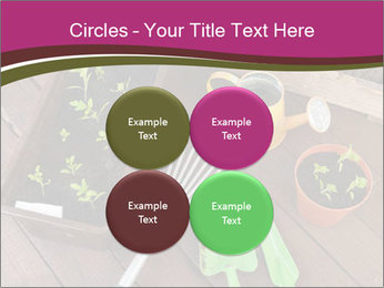 Plants Cuultivation PowerPoint Template - Slide 38