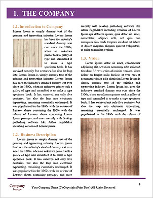 0000091276 Word Template - Page 3