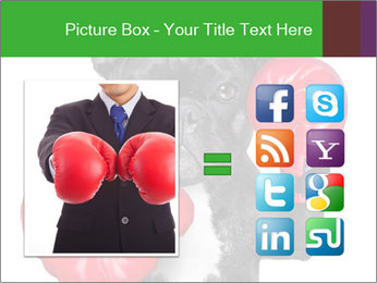 French Bulldog In Red Boxing Gloves PowerPoint Templates - Slide 21