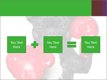 French Bulldog In Red Boxing Gloves PowerPoint Templates - Slide 95