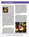 0000091287 Word Template - Page 3
