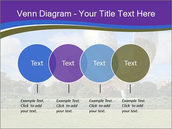 Floralis Generica PowerPoint Template - Slide 32