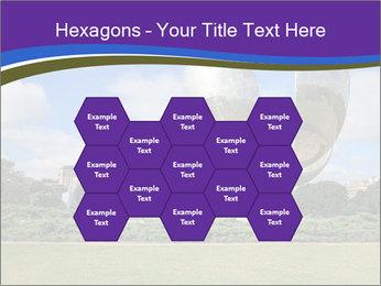 Floralis Generica PowerPoint Template - Slide 44