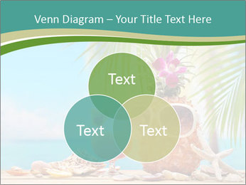 Ms ananas PowerPoint Template - Slide 33