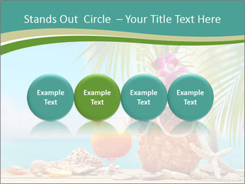 Ms ananas PowerPoint Template - Slide 76