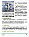 0000091295 Word Template - Page 4