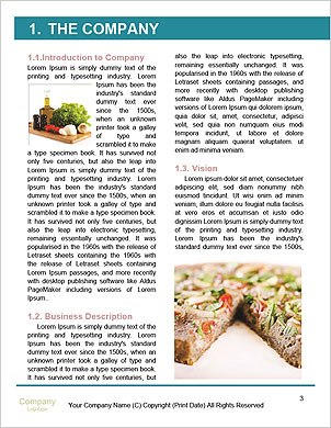 0000091301 Word Template - Page 3