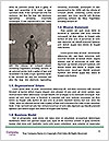 0000091303 Word Templates - Page 4