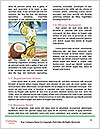 0000091308 Word Templates - Page 4