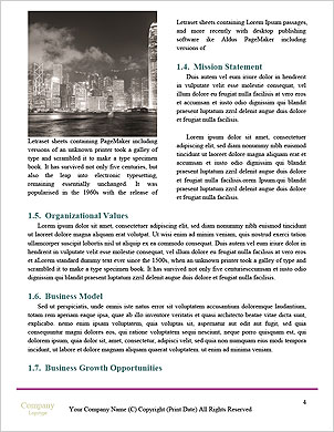 0000091309 Word Template - Page 4