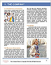 0000091314 Word Template - Page 3
