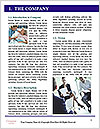 0000091316 Word Template - Page 3