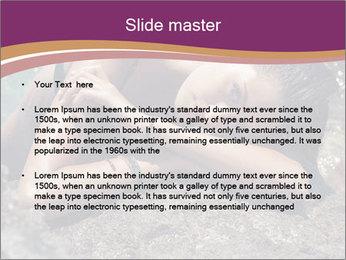 Carefree beautiful brunette PowerPoint Template - Slide 2