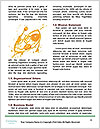 0000091328 Word Template - Page 4