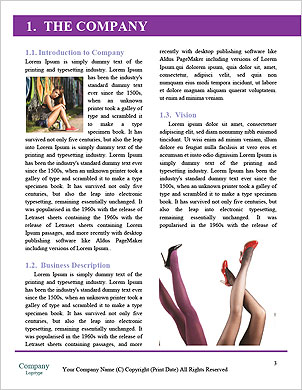 0000091330 Word Template - Page 3