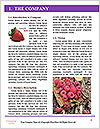 0000091332 Word Template - Page 3