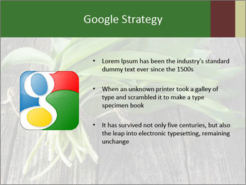 Ramson bunch PowerPoint Template - Slide 10