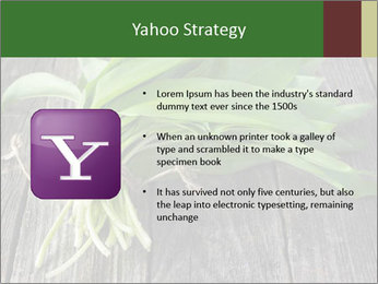 Ramson bunch PowerPoint Template - Slide 11