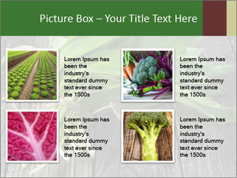 Ramson bunch PowerPoint Template - Slide 14