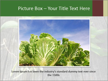 Ramson bunch PowerPoint Template - Slide 16