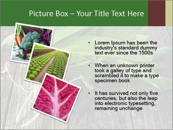 Ramson bunch PowerPoint Template - Slide 17
